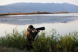 Watching Water Fowls Hula Valley