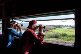 Birdwatching - Hula Valley National Reserve