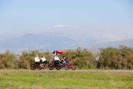Tourists In The Hula Valley National Park