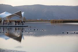 Birds Observatory - Hula Valley National Park