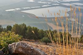 The Hula Valley