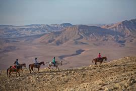 Negev Makhtesh Ramon (Crater) 7