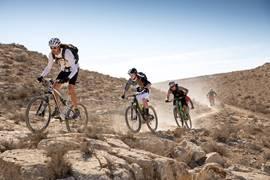 Bike Riding Negev