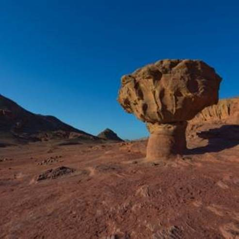 "הפטריה - פארק תמנע - ""HaPitriya,"" at Timna Park"