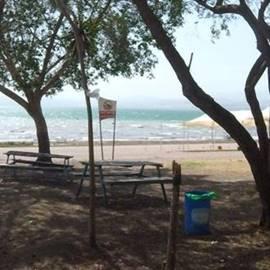 Golan Beach - חוף גולן