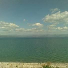 חוף גלי כנרת - רימונים Rimonim Galei Kinneret Beach