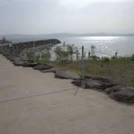חוף כינר - Kinar Beach