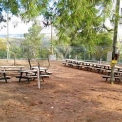 Beit ha'yaharan Yatir forest - בית היערן ביער יתיר