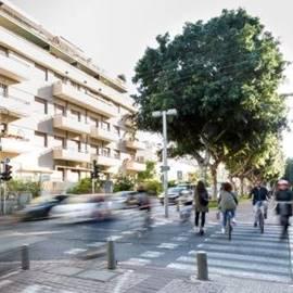 השדרה התוססת - The Vibrant Boulevard