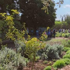 מרכז מבקרים לבידו נהלל נוף מחוץ למרכז - Levidu Nahalal Visitors Center view outside the center