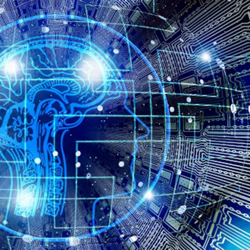 brain illustration - אילוסטרציה של מוח