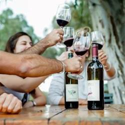 people drinking wine - אנשים שותים יין
