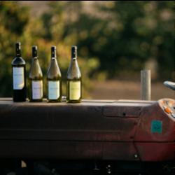בקבוקי יין - Wine Bottles