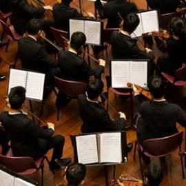 כנרים בקונצרט  - Violinists At A Concert
