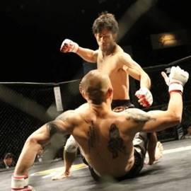 שני מתאגרפים בתחרות - Two Boxers In Competition