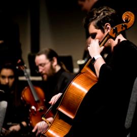 נגני כלי קשת בקונצרט פילהרמוני - String Musicians At A Philharmonic Concert