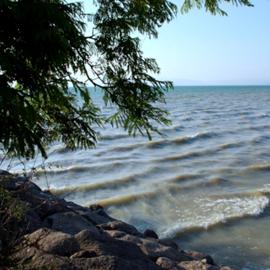 חוף גינוסר - Ginosar Beach