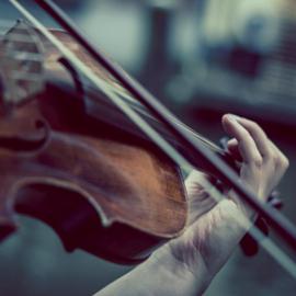 כינור - Violin