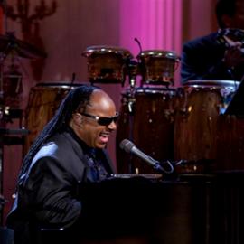 הזמר סטיווי וונדר בהופעה - Singer Stevie Wonder In Concert