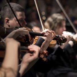 נגני כינור בקונצרט - Violin Players At A Concert