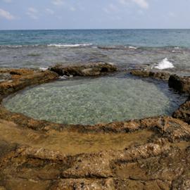 שמורת ים שקמונה - Shikmona Marine Reserve