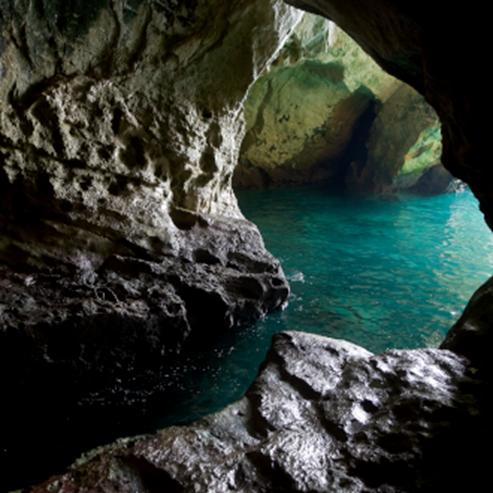 שמורת ים ראש הנקרה-אכזיב - Rosh Hanikra-Achziv Marine Reserve