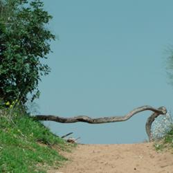 חוף השרון - Hof HaSharon National Park