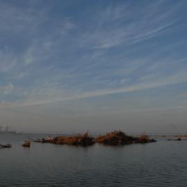 שמורת ים שקמה - Shikma Marine Reserve