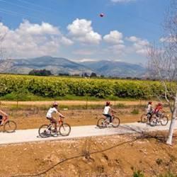 קבוצה רוכבת על אופניים - A group riding a bicycle