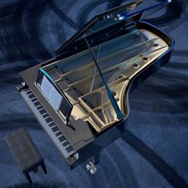 פסנתר - A Piano