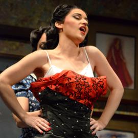 זמרת אופרה בהופעה - An Opera Singer At A Performance