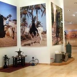 תמונות במרכז המבקרים - Pictures At The Visitors Center
