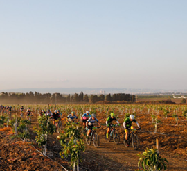 Picture of Migdal Epic Israel : étapes marathons en terre promise