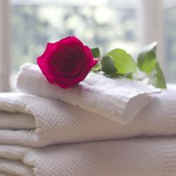 מגבת ופרח בספא של המלון - A Towel And A Flower In The Hotel Spa