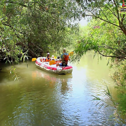 אנשים על קייק בנהר - People On A Kayak In A River